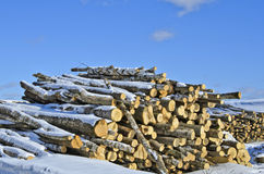 Wood for production Stock Photography