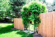 Wood Privacy Fence dog ear style Stock Images