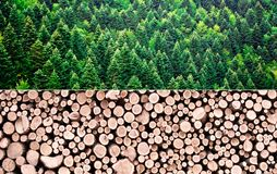 Wood production concept royalty free stock photo