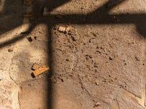 Wood pulver Royaltyfria Bilder