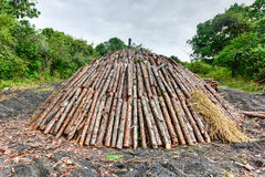 Wood pyre of pine logs. Wood pyre being prepared for the creation of charcoal from pine logs in Vinales, Cuba stock photography