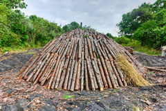 Wood pyre of pine logs. Wood pyre being prepared for the creation of charcoal from pine logs in Vinales, Cuba royalty free stock image
