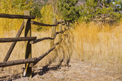 Wood rail fence through grassy field Royalty Free Stock Photos