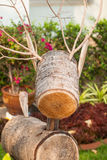 Wood raring Royaltyfri Bild