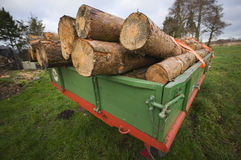Wood ready for transportation Stock Photography