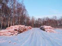 Wood reserves near road Royalty Free Stock Photos