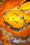 Wood and resin Stock Photo