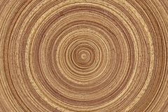Wood rings Royalty Free Stock Images
