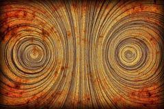 Wood rings Stock Photos