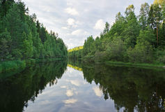 Wood river. In Karelia (Russia) in evening illumination Stock Images
