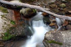 Wood river. In Shenandoah National park Stock Photo