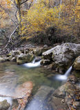 Wood river in the autumn. Landscape Stock Photos