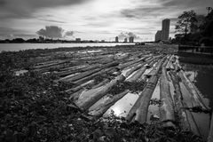 Wood in river Bangkok Stock Images