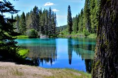 The Wood river head waters comes up in Jackson Kimball State Park, Oregon and flows down to Agency Lake. It is well known for. Trout fishing and kayaking stock photos