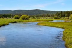 The Wood river head waters comes up in Jackson Kimball State Park, Oregon and flows down to Agency Lake. It is well known for. Trout fishing and kayaking stock photography