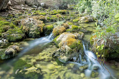 Wood River in summer. Wood River in summer, passing by the term of Paterna del Madera, Albacete, Spain. Horizontal capture with green tones Royalty Free Stock Image
