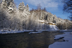 The wood river in the winter Stock Photography