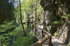 Wood and rock landscape in Bohemian Switzerland, Kammintz George rocky ravine, Saxon Switzerland National Park. Wood and rock landscape in Bohemian Switzerland royalty free stock photo