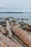 Wood and rocks by water with view of Elliot Bay in Myrtle Edwards Park near downtown of Seattle, USA. Wood and rocks by water with view of Elliot Bay in Myrtle stock photography