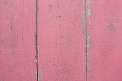 Wood rosa bakgrund Royaltyfri Foto