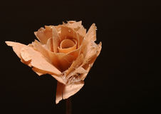 Wood rose Royalty Free Stock Photography