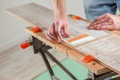 Wood ruler Stock Image