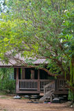 Wood rural house. Peace wood rural house in the forest with green tree cool environment royalty free stock image