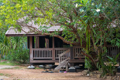 Wood rural house. Peace wood rural house in the forest with green tree cool environment royalty free stock photos
