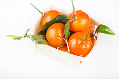 A wood rustic crate full of clementine mandarin oranges. stock photography