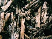 Wood& x27; s转储 免版税图库摄影
