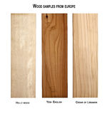 Wood samples from Europe Royalty Free Stock Images