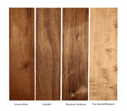 Wood samples of Goncalo wood,Cristobal,Rosewood and Pear, isolated Royalty Free Stock Photo