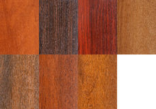 Wood samples set Stock Image