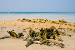 Wood on the sand and boat on Andaman Sea, Phuket Royalty Free Stock Photos