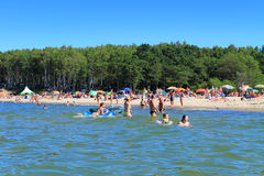 The wood at a sandy beach of the Baltic Sea Royalty Free Stock Photos
