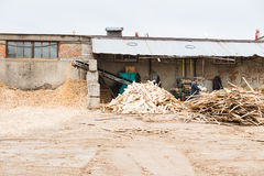 Wood sawdust Stock Images