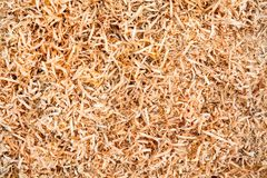 Wood sawdust Stock Photo