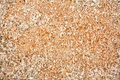 Wood sawdust Stock Photography
