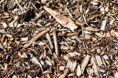 Wood Sawdust Texture Stock Photography