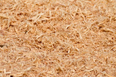 Wood Sawdust Texture Stock Photo