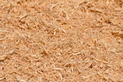 Wood Sawdust Texture Royalty Free Stock Photography