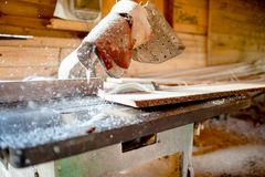 Wood sawing and cutting at industrial wood Royalty Free Stock Image