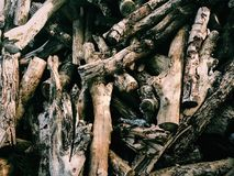Wood& x27; scarico di s fotografia stock libera da diritti