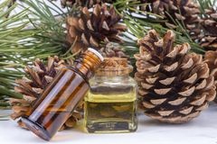 Wood scents for winter time aromatherapy. Pine cones and fresh green fir tree boughs, essential oil bottles, top view.  royalty free stock images