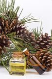 Wood scents for winter time aromatherapy. Pine cones and fresh green fir tree boughs, essential oil bottles, top view.  royalty free stock image