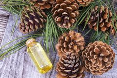 Wood scents for winter time aromatherapy. Pine cones and fresh green fir tree boughs, essential oil bottles, top view.  stock images