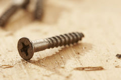 Wood screw Stock Photo