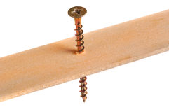 Wood Screw. In Wood Stock Photos