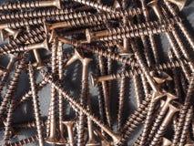 Wood screw Stock Image