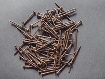 Wood screw Royalty Free Stock Photo
